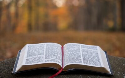 Week Two Bible Reading
